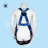 Volles Body Harness, Safety Harness, Seat Belt, Safety Belt, Webbing mit Five-Point Fixed Mode (EW3000BH)