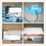HP de la pompe à eau de Qb 60 0.5 avec Impellor en laiton