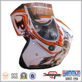 Professionele OEM Modulaire Helm met Koele Tatoegering voor Motorfiets (LP505)