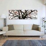 Wand-Kunst-dekorativer nackter reizvoller Wand-Kunst-Farbanstrich