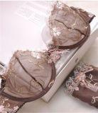 Sujetador transparente y Panty del nuevo diseño 2016 para las mujeres (PYB1015)