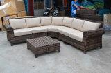 Напольные комплект мебели сада ротанга и мебель патио