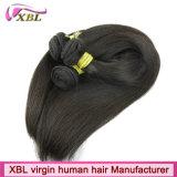Extensões retas de seda malaias livres do cabelo do Weave do emaranhado