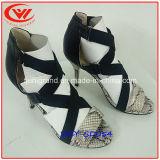 Sandálias das mulheres da forma do salto elevado