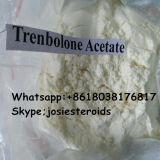 Trenb 밝은 노란색 Acet 근육은 스테로이드 분말 Trenbolone 아세테이트 10161-34-9를 얻는다