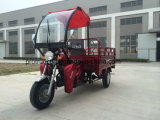 150cc Three Wheel Motorcycle with Cargo liner Box