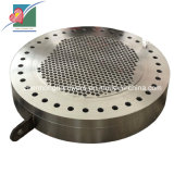 Heat Exchanger (ZH-STP-002)를 위한 OEM High Quality Steel Tubeplate/Tubesheet