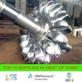 Idro gruppo elettrogeno della turbina di Turgo per Shpp 500kw 1000kw 2000kw 5000kw