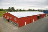 Entrepôt préfabriqué de structure métallique de coût bas