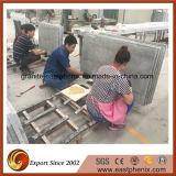 Китайская плитка мрамора серебра леопарда (отрезать по заданному размеру)