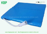 Li-ione Battery Pack di 14.8V 30ah per Solar Lamp Battery