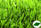 Recyclable Artificial Grass в саде Гуанчжоу Sports