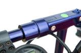 Bewegliches intelligentes faltbares elektrisches Fahrrad-Fahrzeug für Büroangestellten