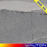 Azulejo de suelo rústico de azulejo de la porcelana del material de construcción de la inyección de tinta 600*600 (IM6680)