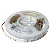alta SMD5630 LED CC flessibile luminosa dell'indicatore luminoso di striscia di 60LEDs/M 12V