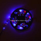 Naakte Raad 3528 RGB Flexibele LEIDENE Licht van de Strook