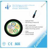 L'usine GYTS-24 de la Chine creuse le câble optique de fibre pour l'installation de pipe de conduit