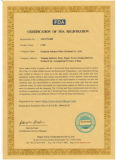 CMC per i rifornimenti della fabbrica del CMC del commestibile (cellulosa carbossimetilica del sodio) direttamente