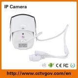 1.0 Cámara infrarroja al aire libre del IP de la vigilancia del CCTV de Megapixel P2p
