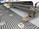 Máquina servo dobro de alta velocidade da imprensa de perfurador ED200