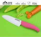 """Couteau à chef multifonctionnel de cuisine 5.5 """"Razor Sharp Kitchen"""