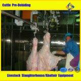 Оборудование убоя скотин оборудования хладобойни скотин