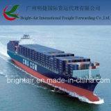 Navio de carga do recipiente do transporte de mar LCL FCL de China a Newark, EUA