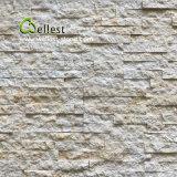실내 벽을%s 크림 베이지색 색깔 대리석 문화 돌