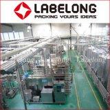 La última planta de llenado de la bebida del deporte para las botellas del animal doméstico, surtidor de China
