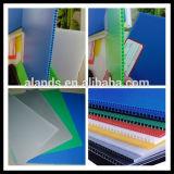 Farbiger Plastikblatt-Hersteller des polypropylen-pp.
