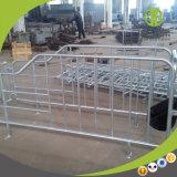 Stalle galvanisée de gestation de porc d'IMMERSION chaude de matériel de porc