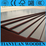 18mm Poplar Core Black Phenolic Film Faced Plywood