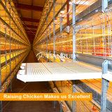Tipo gaiola automática do projeto H de Tianrui da grelha da galinha da bateria da boa qualidade
