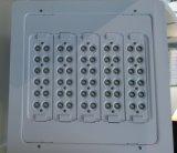 Estaciones De Servicio impermeable LED Canopy luces (Hz-TJD100W)
