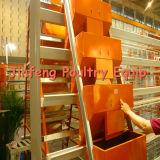Matériel de volaille de poulailler de cage de poulet de matériel de volaille de poulailler de cage de poulet