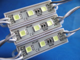 SMD 5054 3LED Module Waterproof 36X09 White