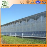 지원 시스템을%s 가진 알루미늄 폴리탄산염 정원 온실