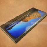 Stampa eccellente del libro del tavolino da salotto del libro di fotographia del libro di Hardcover di stampa del libro grande