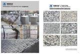 G655 azulejos, losas, pasos, pavimentadora, piso al aire libre, piedra de pavimentación