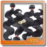 아름다운 파 브라질 칠흑색 Remy 머리