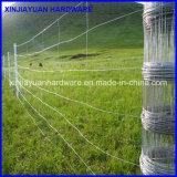 Cerca galvanizada de /Glassland da cerca de /Field da cerca da exploração agrícola