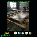Natural Veneer Plywood for Furniture with Sapele Film, Cherry Film, Oak Film, Walnut Film, Teak Film