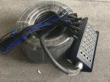Cavo del serpente della Manica XLR di abitudine 24 audio con la casella della fase