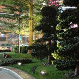 indicatore luminoso solare di obbligazione 100LED per il patio della Camera del giardino (RS2008-100)