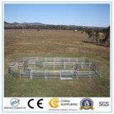 Nortonは家畜の処理装置牛囲をゲートで制御する