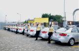 LEIDENE van de Reclame van de taxi Hoogste Vertoning