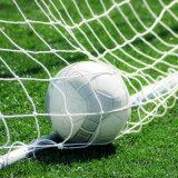 Сеть футбола футбола сетки 11 игрока изготовленный на заказ квадратная