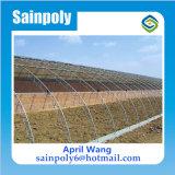 صاحب مصنع دفيئة شمسيّة لأنّ زراعيّة