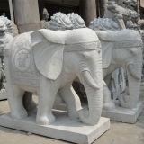 Natuurlijk Graniet en de Marmeren Snijdende Standbeelden van de Olifant