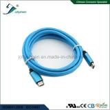 Cabeça masculina de USB3.1 C Matel com cabo cobrando da trança de nylon da luva
